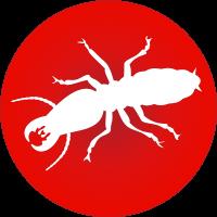termite_icon