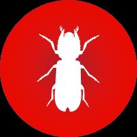 borer icon